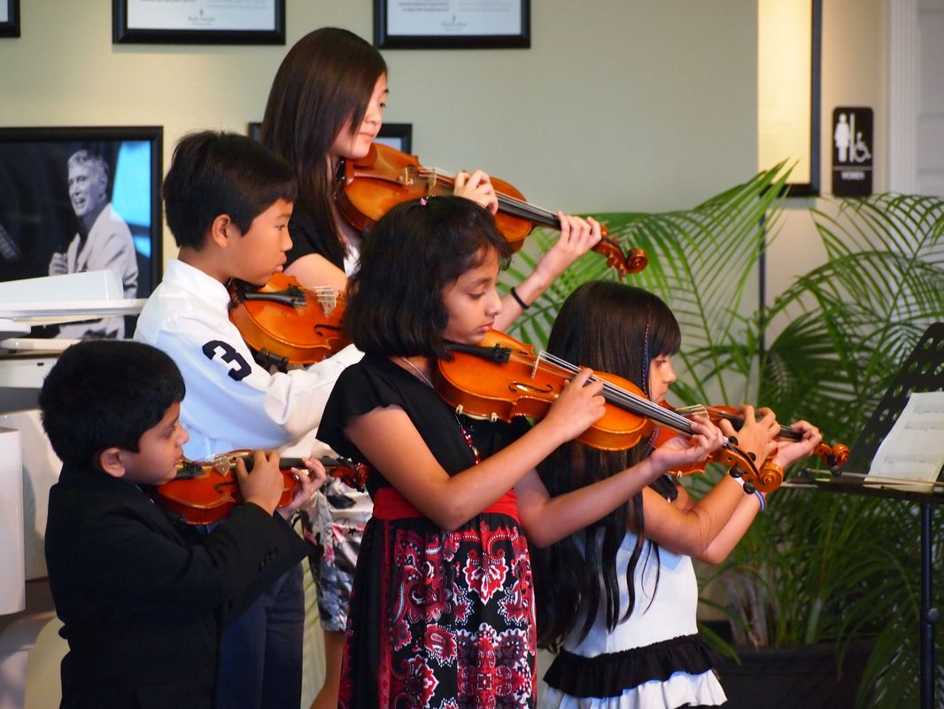Suzuki group violin lessons
